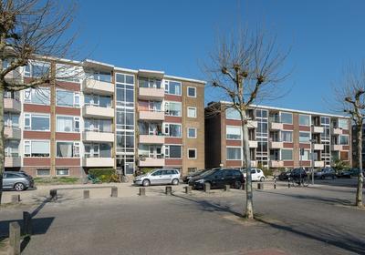 Adriaan Van Ostadestraat 39 in Groningen 9718 RR