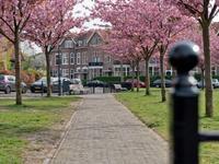 Spruitenbosstraat 20 in Haarlem 2012 LK