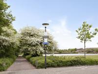 Rupelstraat 60 in Helmond 5704 AX
