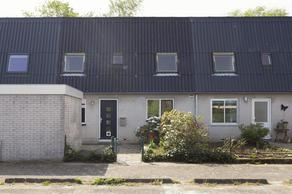 Haf 41 in Lelystad 8212 XL