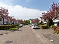 Singravenstraat 7 in Almere 1333 SN