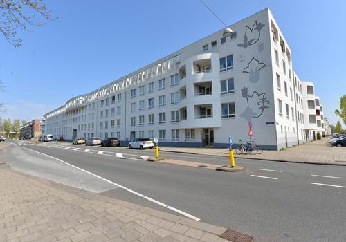 Dolingadreef 239 in Amsterdam 1102 WT