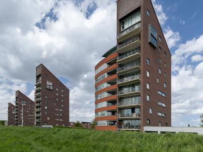 Erik Pinksterblomstraat 118 in Oosterhout 4906 ET