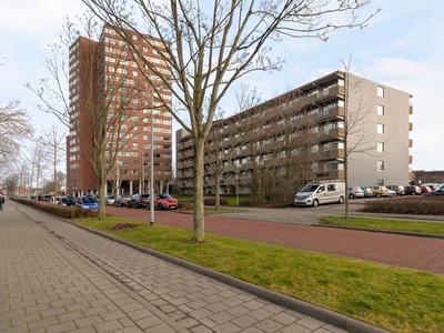 Vredehoflaan 310 in Vlissingen 4382 CJ