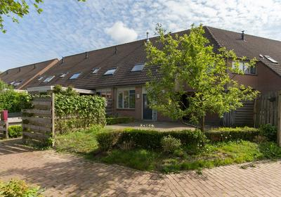 Wildzoom 53 in Barneveld 3772 SM