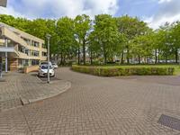Schellerpad 16 in Zwolle 8017 AM