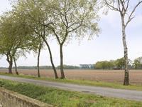 Oude Essenerweg 8 in Kootwijkerbroek 3774 JK