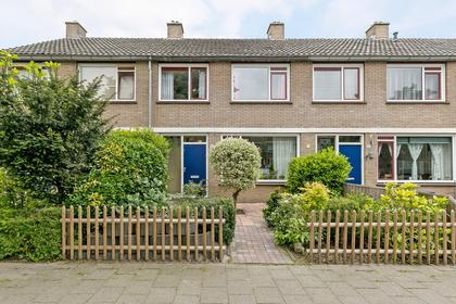 Christoffelkruid 13 in Rotterdam 3068 RB