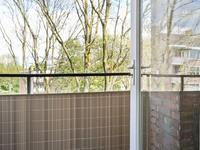 Delftlaan 305 Iii in Haarlem 2024 CG