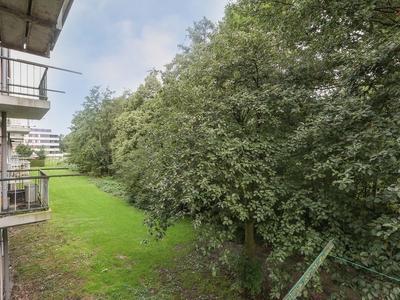 Koninginneweg 125 in Bodegraven 2411 XN