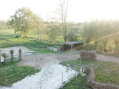 Van Heemstraweg 51 B in Beneden-Leeuwen 6658 KG