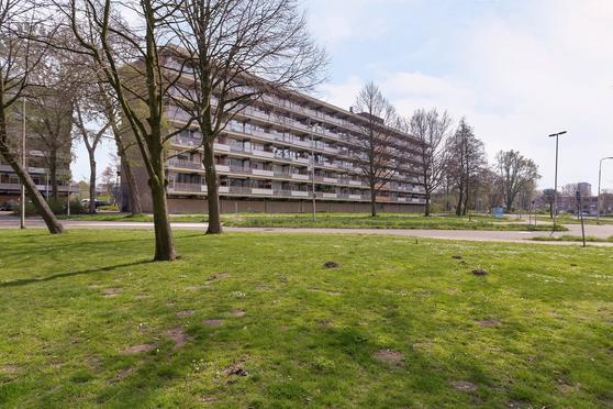 Dunantstraat 816 in Zoetermeer 2713 XJ