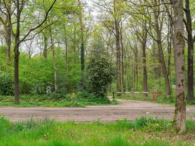 Langeloerduinen 3 43 in Norg 9331 WS