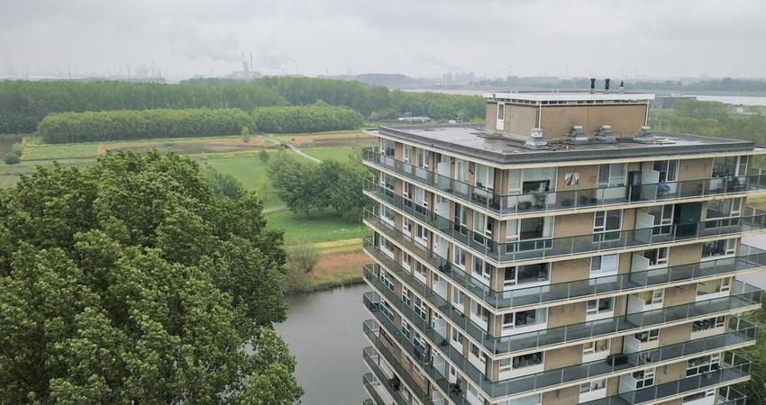 Adriaen Brouwerstraat 130 in Maassluis 3141 JD