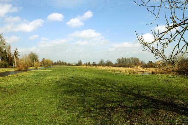 in Reeuwijk 2811 NP