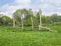 Stuwwal 14 in Alkmaar 1822 EE