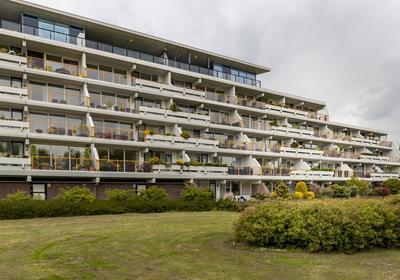 Haydnstraat 142 in Capelle Aan Den IJssel 2901 HL