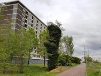 Vlaardingerdijk 430 in Schiedam 3117 ZW