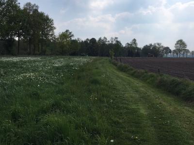 Bocholterweg in Weert 6006 TN