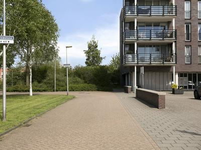Yellowstone 80 in Purmerend 1448 XX