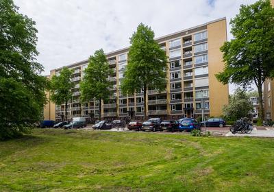 Karel Doormanlaan 106 in Utrecht 3572 NL