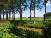 Heemraadsdam 45 in Oosterhout 4908 BB