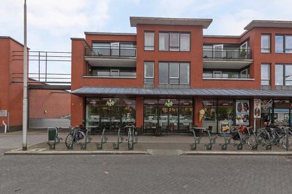 Willem De Zwijgerstraat 12 in Hendrik-Ido-Ambacht 3341 EN