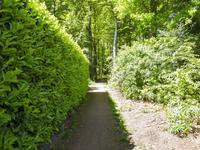 Koppenhoek 15 in Eersel 5521 GW