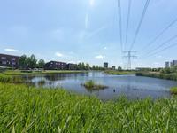 Marius Richtersstraat 55 in Rotterdam 3059 TH