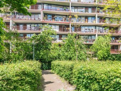 Haarlemmerweg 229 D in Amsterdam 1051 NV