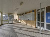 Van Bosseplantsoen 121 in Dordrecht 3317 PN