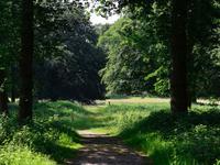 Duinlustweg 36 in Overveen 2051 AB