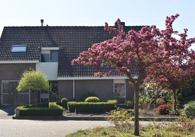 Merelhof 42 in Norg 9331 KL