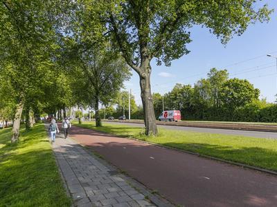 Rotterdamsedijk 2 A in Schiedam 3112 BA