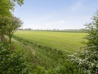 Schaapweg 4 in Westernieland 9969 PM