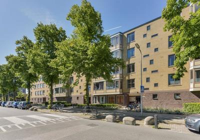 Van Bijnkershoeklaan 271 * in Utrecht 3527 XH