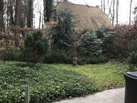 Heidestraat 103 - 6 in Rekem