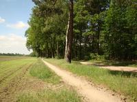 Ruurloseweg 30 72 in Zelhem 7021 HB