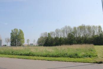 J.D. Van Der Veenstraat in Winschoten 9672 AC