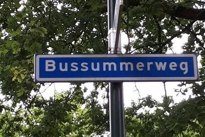 Bussummerweg 36 in Blaricum 1261 CA