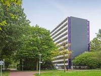 Wipmolen 53 in Amsterdam 1035 CX