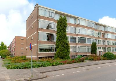 Nieuwenoord 223 in Rotterdam 3079 LJ