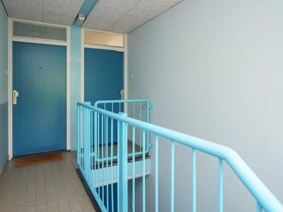 Ridderspoor 41 in Nijmegen 6542 HA