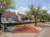 Zilverlinde 21 in 'S-Hertogenbosch 5237 HD