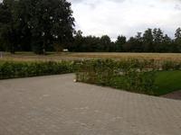 Oud Avereest 16 in Balkbrug 7707 PN