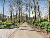 Biesteweg 8 in Hierden 3849 RD