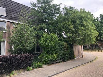 Leeuwerikstraat 24 in Zundert 4881 WZ