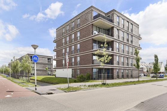 Egmondland 156 in Den Hoorn 2635 MW