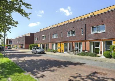 Citroenvlinder 20 in Hoogeveen 7908 VV