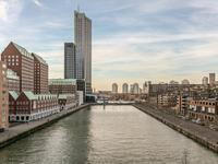 Lodewijk Pincoffsweg 494 in Rotterdam 3071 AS